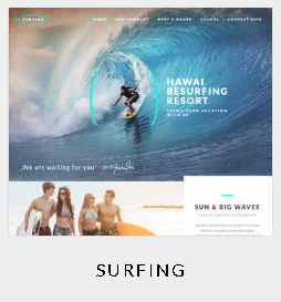 119 themes surfing