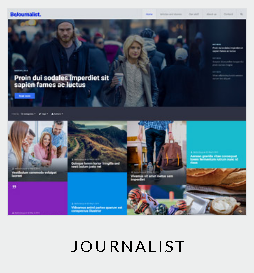 133 themes journalist