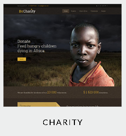 themes charity