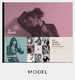 themes model