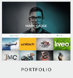 themes portfolio
